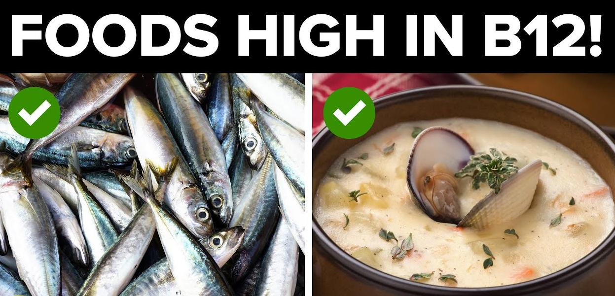 อาหาร 6 อันดับแรกที่มีวิตามินบีสูง 12